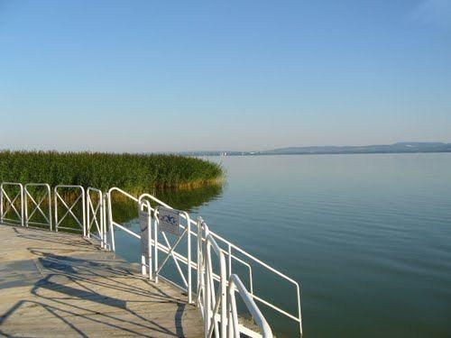Bord de Lac