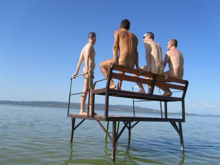 Balaton Lake Neonu