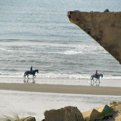 séjour Berck plage