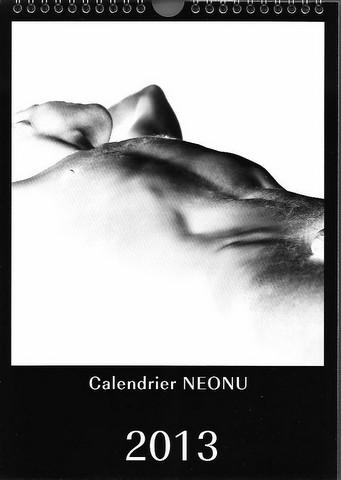 Calendrier Neonu 2013