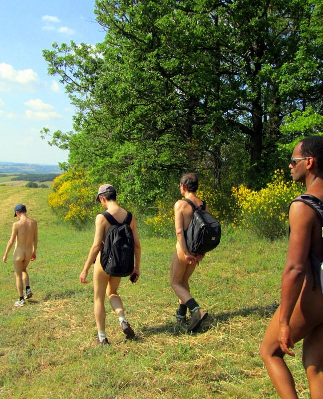 Randonnues en forêt, campagne ou montagne